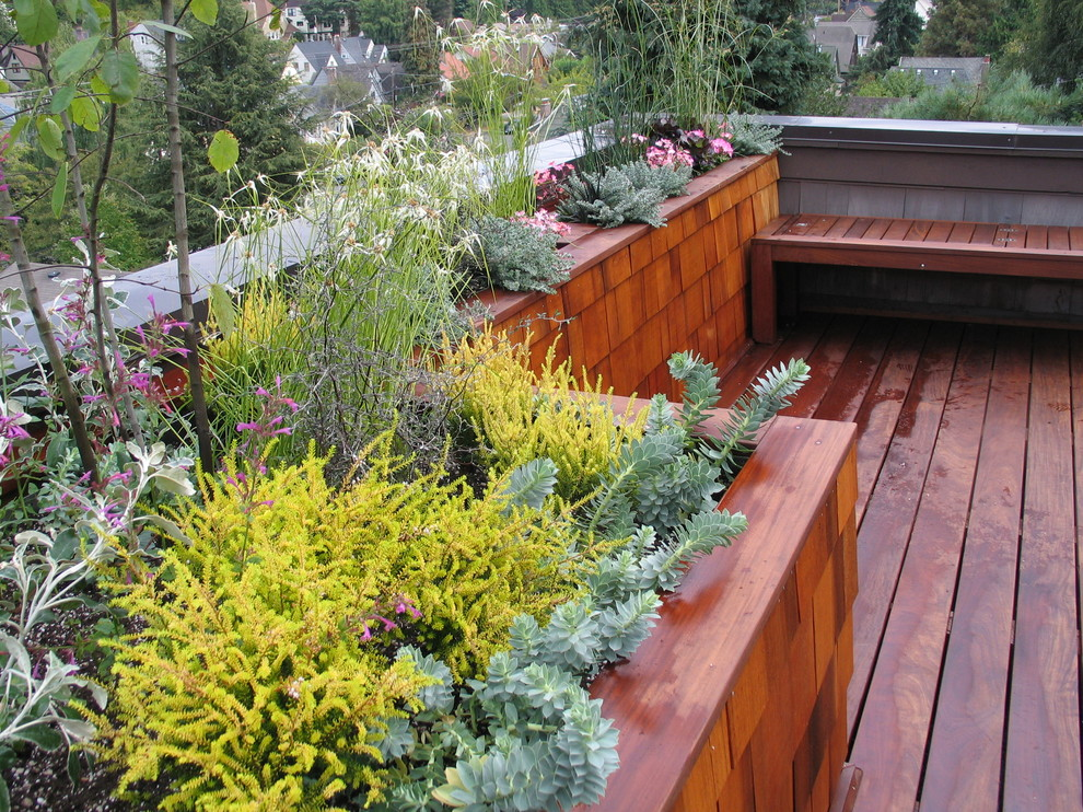 Deck - contemporary deck idea in Seattle