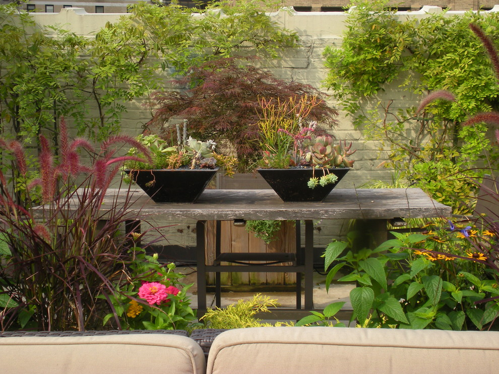 Example of a trendy rooftop deck design in New York with no cover