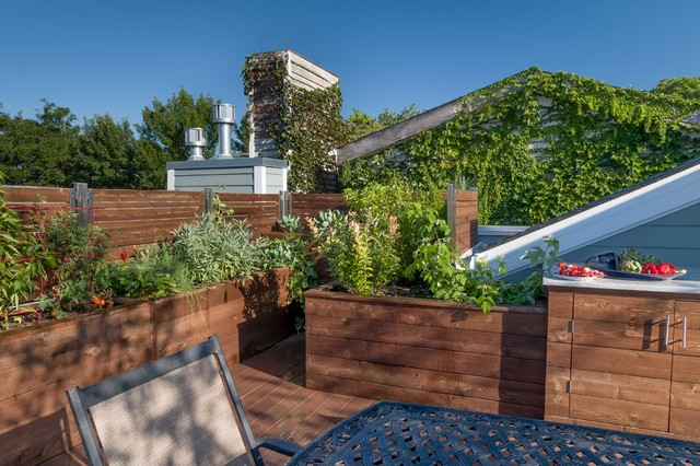 Fruitful Roof Deck Transitional Deck Chicago By