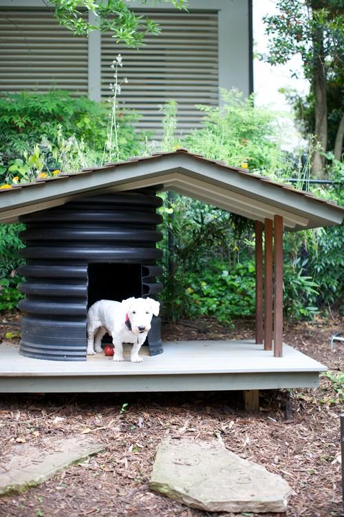 Backyard Ideas For Dogs : Spaces by Durham Interior Designer Heather Garrett Design