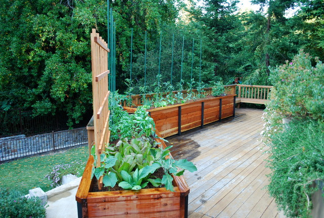 JD Garden Hillsborough Traditional Deck San Francisco by