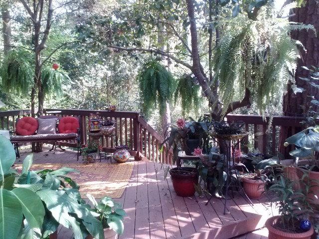 macon ga stunning red pergola in lush setting. Black Bedroom Furniture Sets. Home Design Ideas