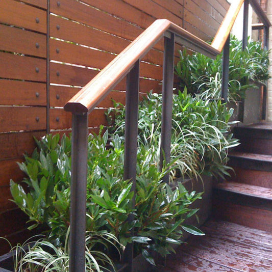 Modern Railing Planters Custom By Rushton: Manhattan Townhouse Garden: Backyard, Terrace, Deck, Fence