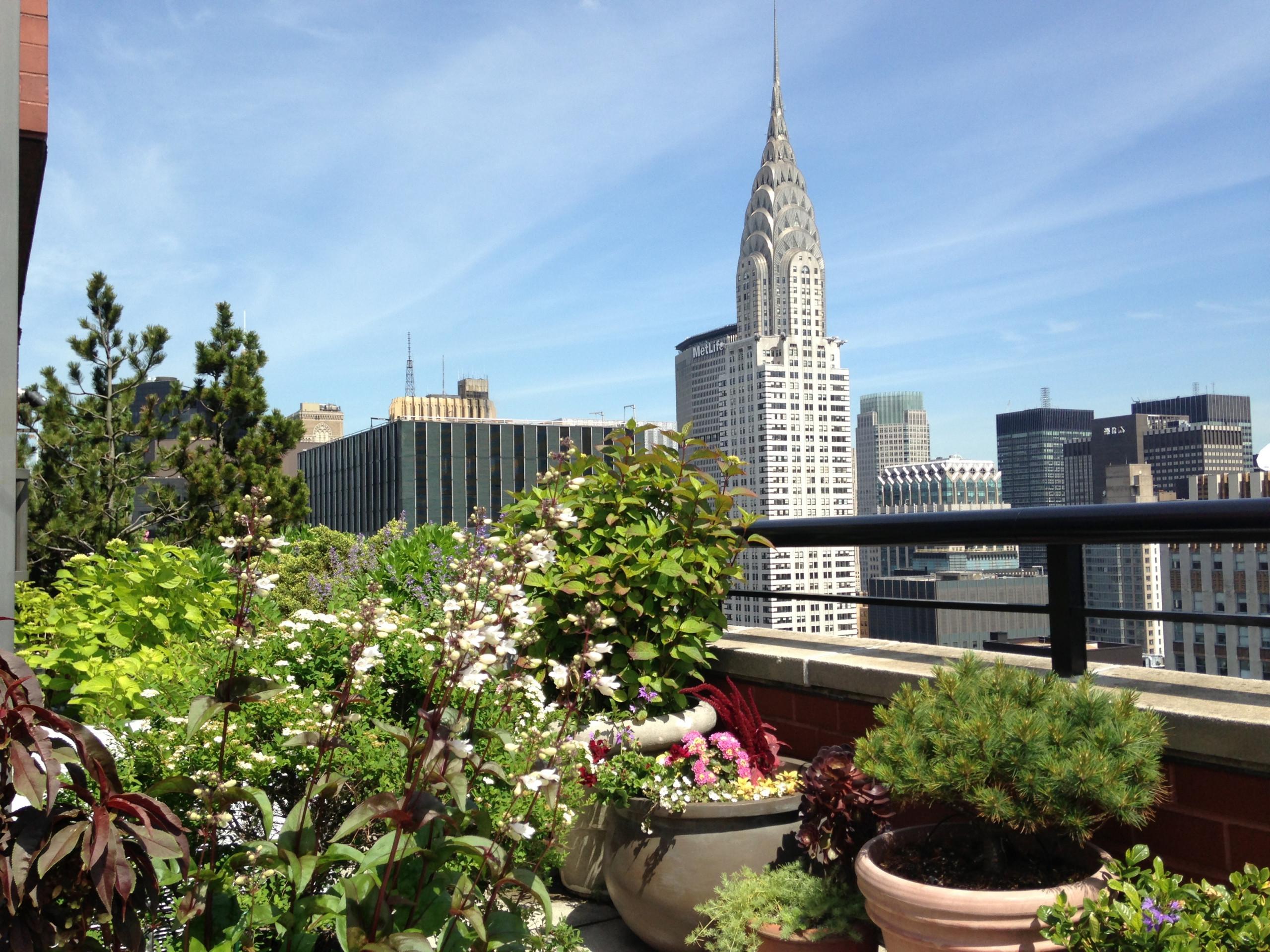 Midtown East Terrace