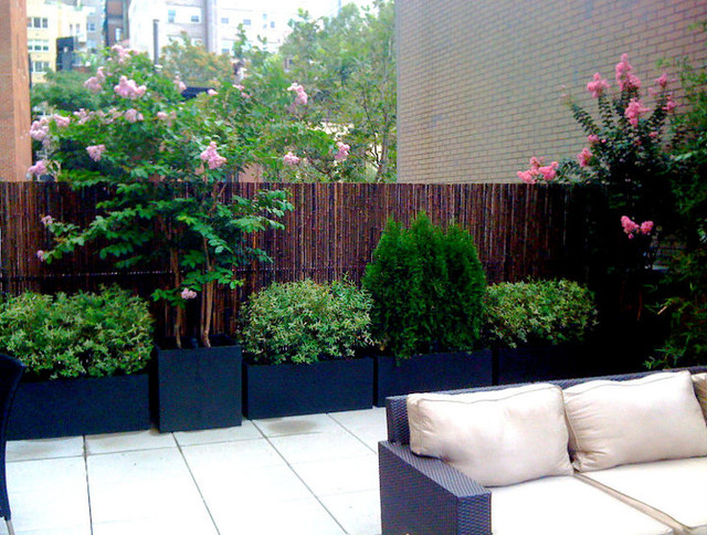 Nyc roof garden bamboo fence terrace deck paver patio for Terrace plants