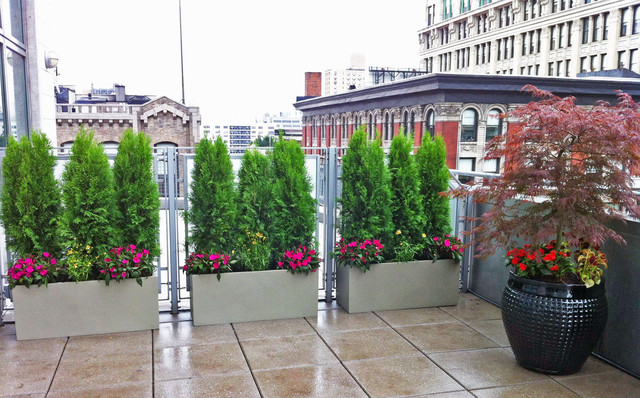 Nyc Roof Garden: Deck Terrace, Pavers, Container Garden