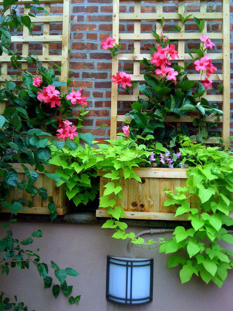 nyc terrace design roof garden planter boxes trellis brick wall vines