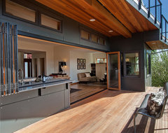 Open wall kitchen and deck contemporary-deck