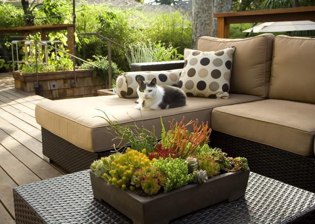 Outdoor Living contemporary-deck