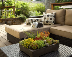 Outdoor Lounge Furniture contemporary patio