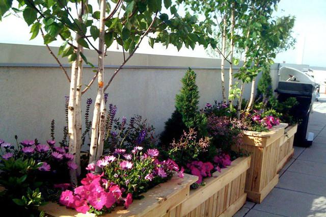 Park slope brooklyn nyc rooftop garden terrace planter for Decking terrace garden