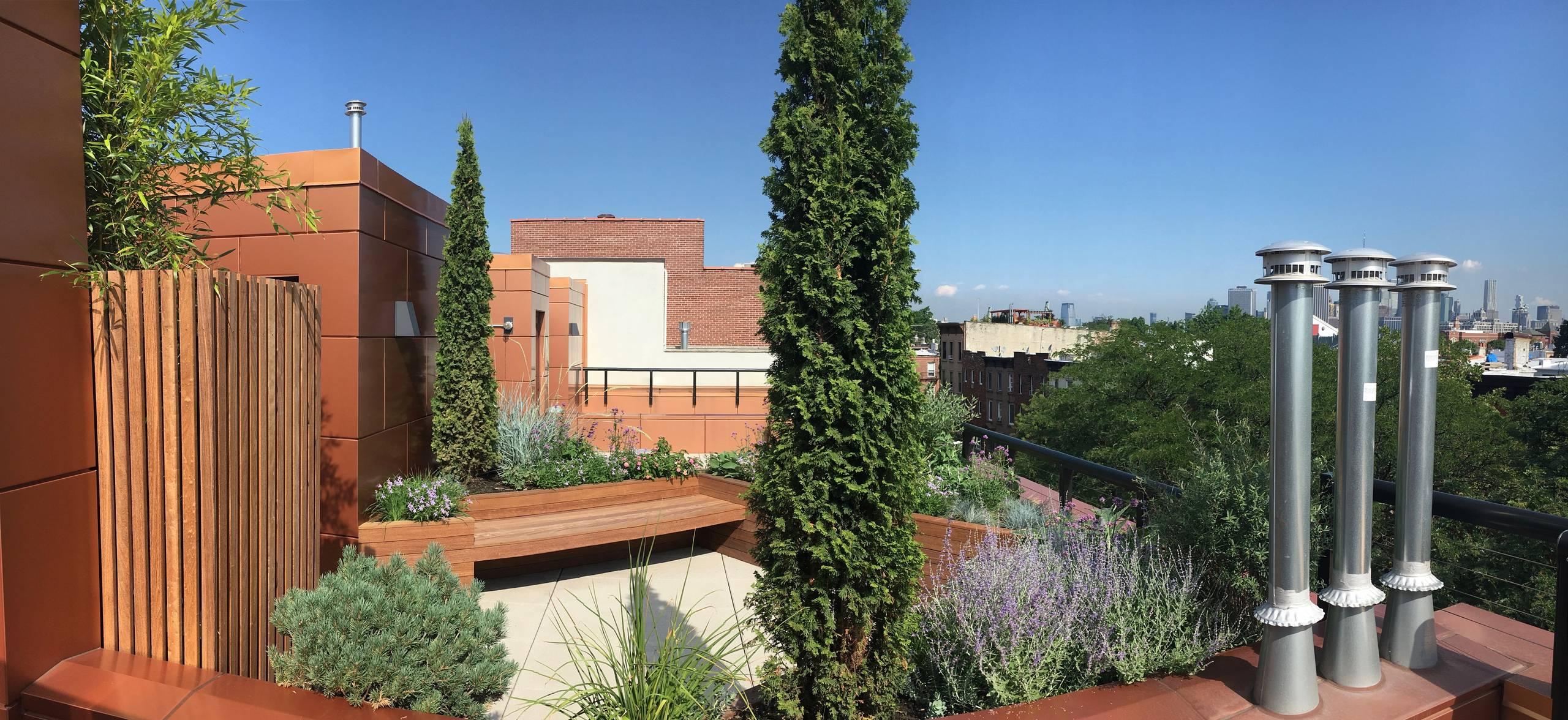 Rooftop garden 5