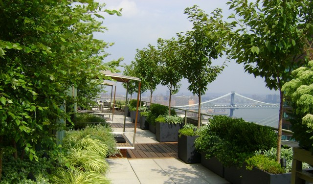 Rooftop garden contemporary deck new york by for Landscape design new york