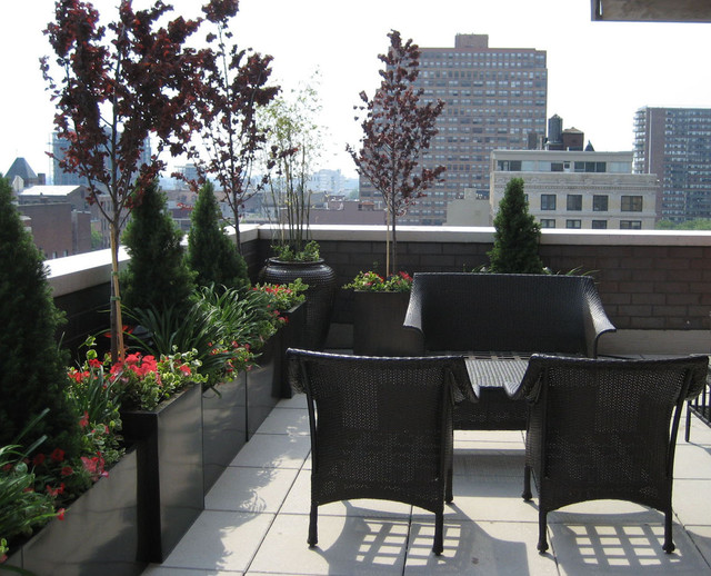 Rooftop terrace roof garden balcony container plants for Terrace seating ideas