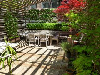 TANK 2012 Client photographs modern-deck