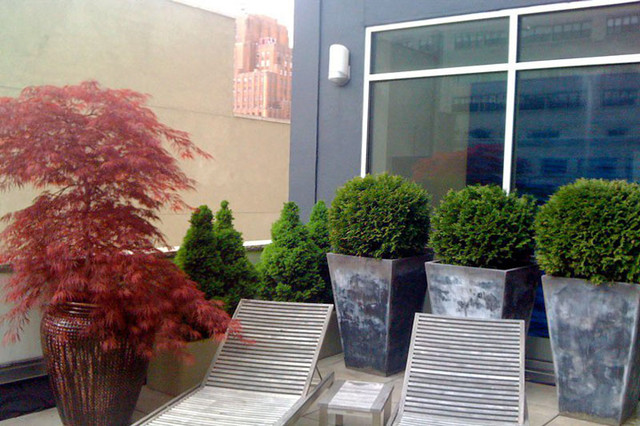 Tribeca Nyc Terrace Deck Roof Garden Chaise Lounges