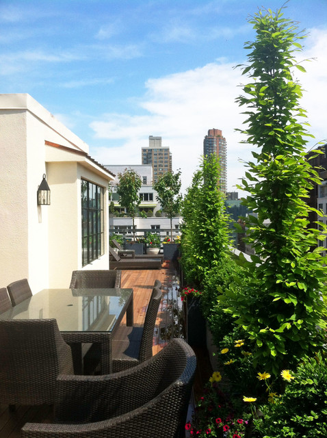 This Is An Example Of A Contemporary Rooftop Deck In New York With Container Garden