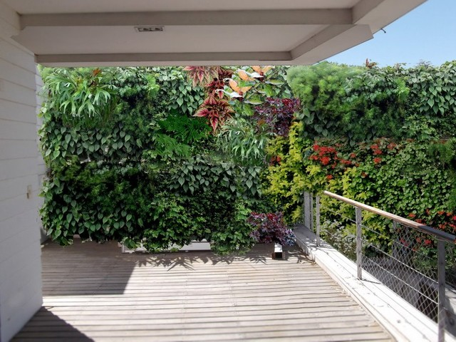 Vertical garden tropical deck other metro by