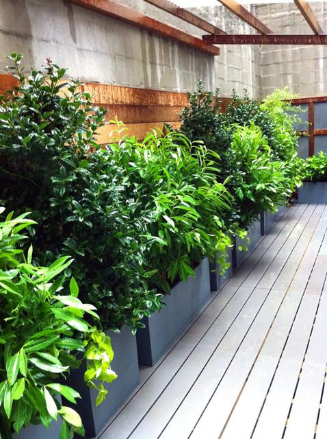 Village Roof Garden Asian Shoji Screen Terrace Deck