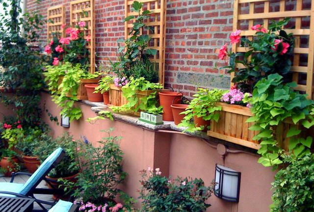 Village Terrace Design: Roof Garden, Planter Boxes, Vines, Brick Wall,  Trellis
