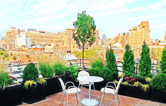 NYC Roof Garden: Paver Deck, Terrace, Container Plants, Grasses, Potted Plants contemporary-deck