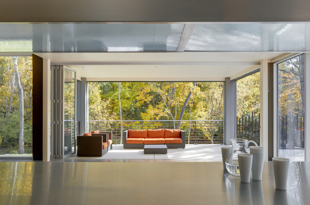 Zinc House contemporary patio