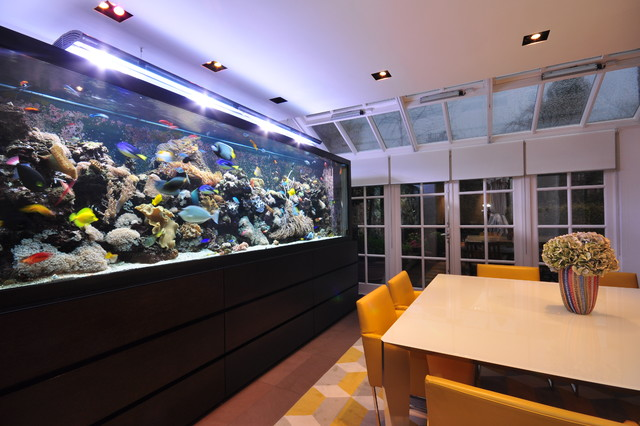 Aquarium Architecture contemporary dining room. Aquarium Architecture