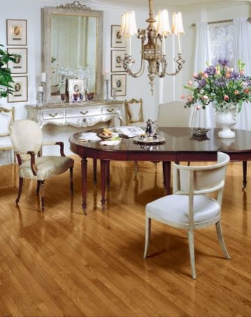 Bruce traditional-dining-room