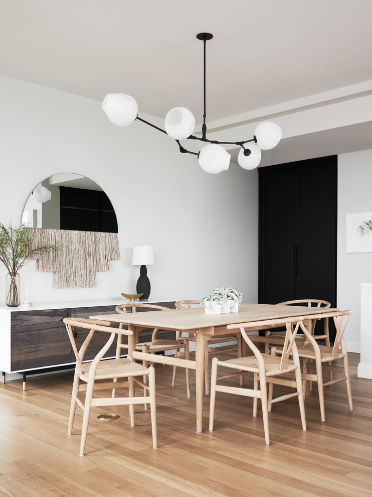 Dining room - scandinavian light wood floor dining room idea in New York with white walls and no fireplace