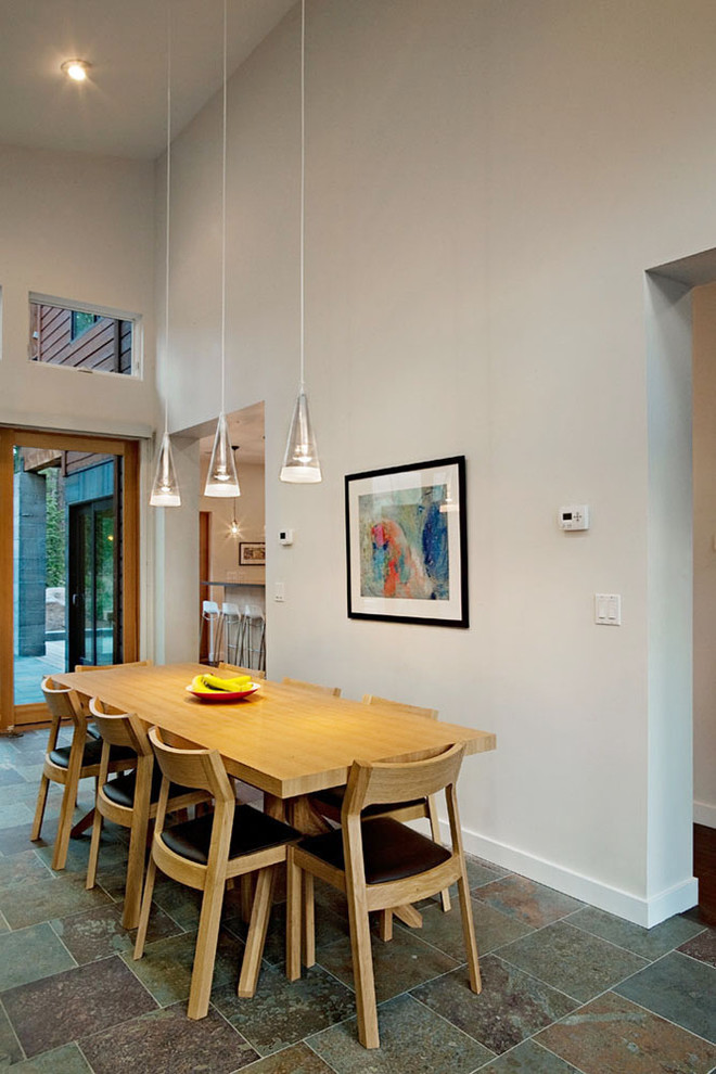 Example of a trendy slate floor dining room design in Other