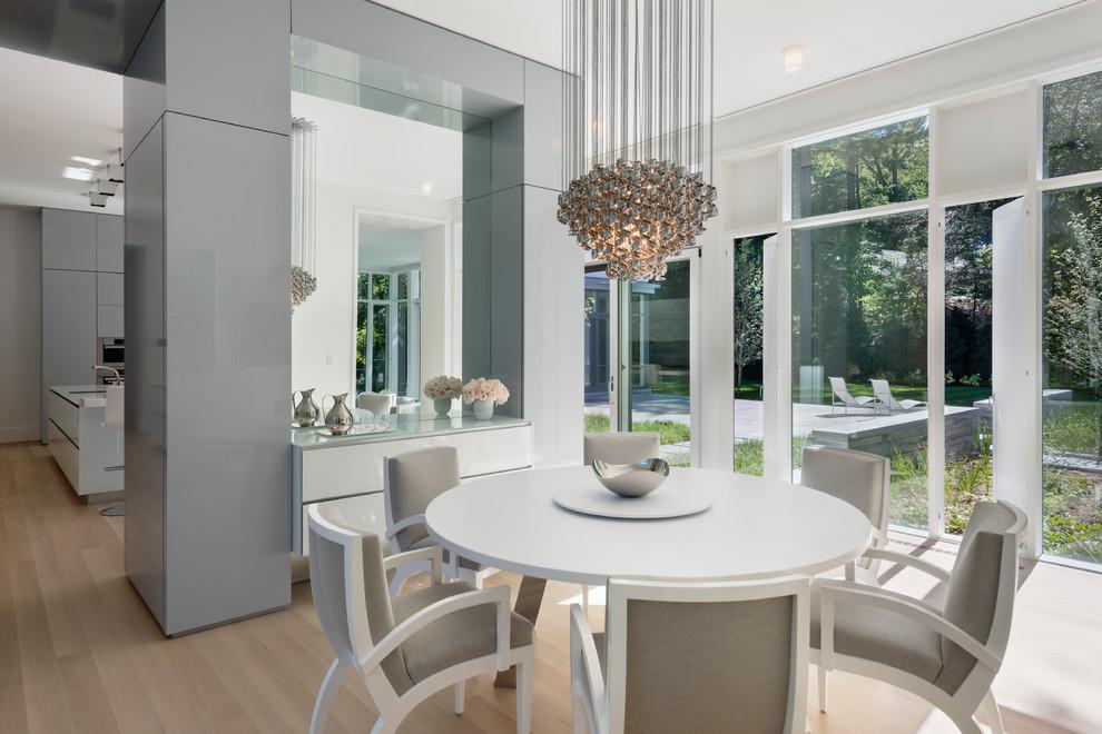 Dining room - contemporary light wood floor dining room idea in Boston