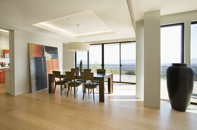 dining room contemporary-dining-room