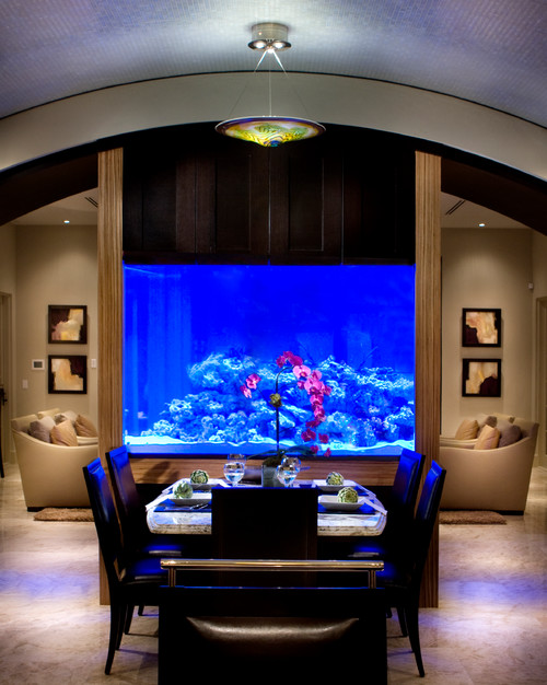 contemporary dining room Fabulous Fish Tanks