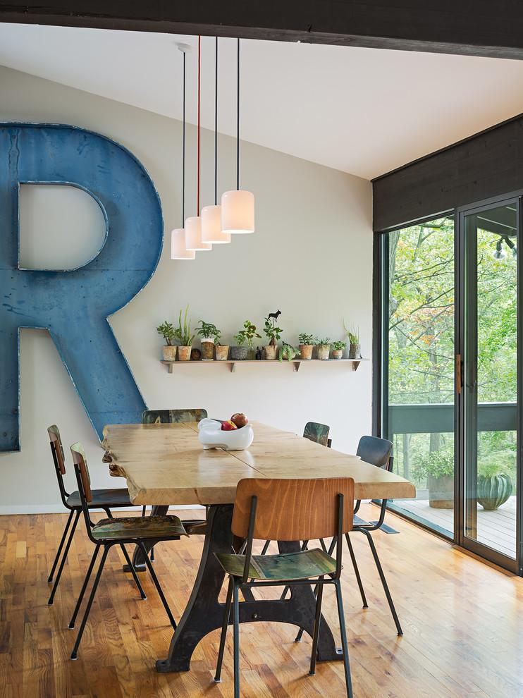 1960s medium tone wood floor dining room photo in Philadelphia with gray walls