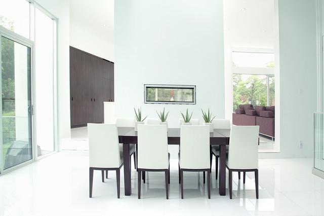 Modern Minimalist Dining Room