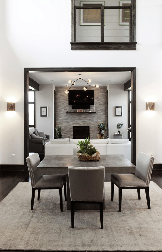 Great room - mid-sized contemporary dark wood floor and brown floor great room idea in New York with white walls, a standard fireplace and a stone fireplace