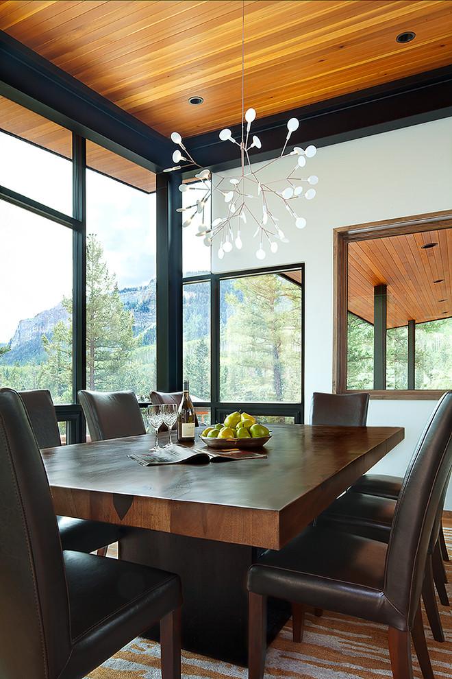 Ejemplo de comedor de cocina actual, de tamaño medio, con paredes grises, suelo de madera en tonos medios y marco de chimenea de piedra