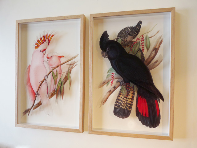 Pair of signarture cockatoo 3d framed fine art prints for 3d dining room wall art