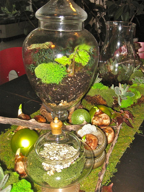 Tablescape using Terrariums, Living Wreaths and natural elements eclectic-dining-room
