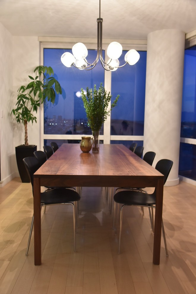 Kitchen/dining room combo - mid-sized modern medium tone wood floor kitchen/dining room combo idea in New York with white walls and no fireplace