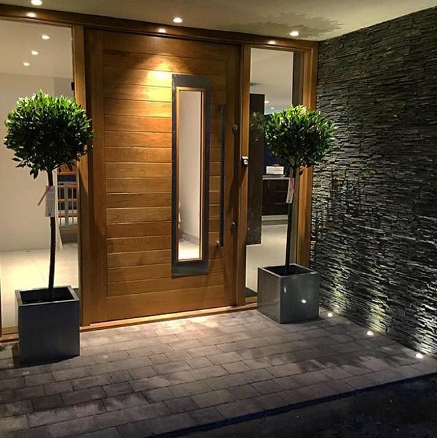 Entrance contemporary-entry