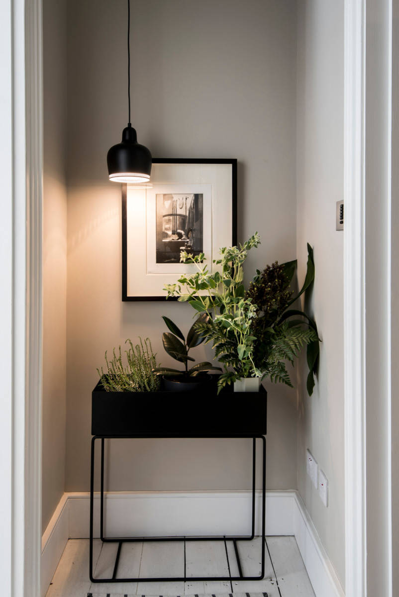 Small Apartment Entry Ideas Photos Houzz