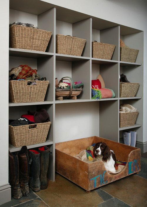 pet basket organization