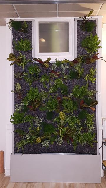 Mur Végétale. exotisk-entre