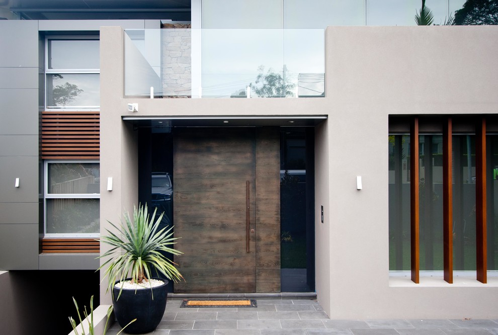 Inspiration for a contemporary front door in Sydney with a single front door and a dark wood front door.