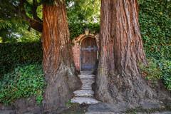 I Sogni son Desideri: 14 Giardini Misteriosi Ispirati alle Favole