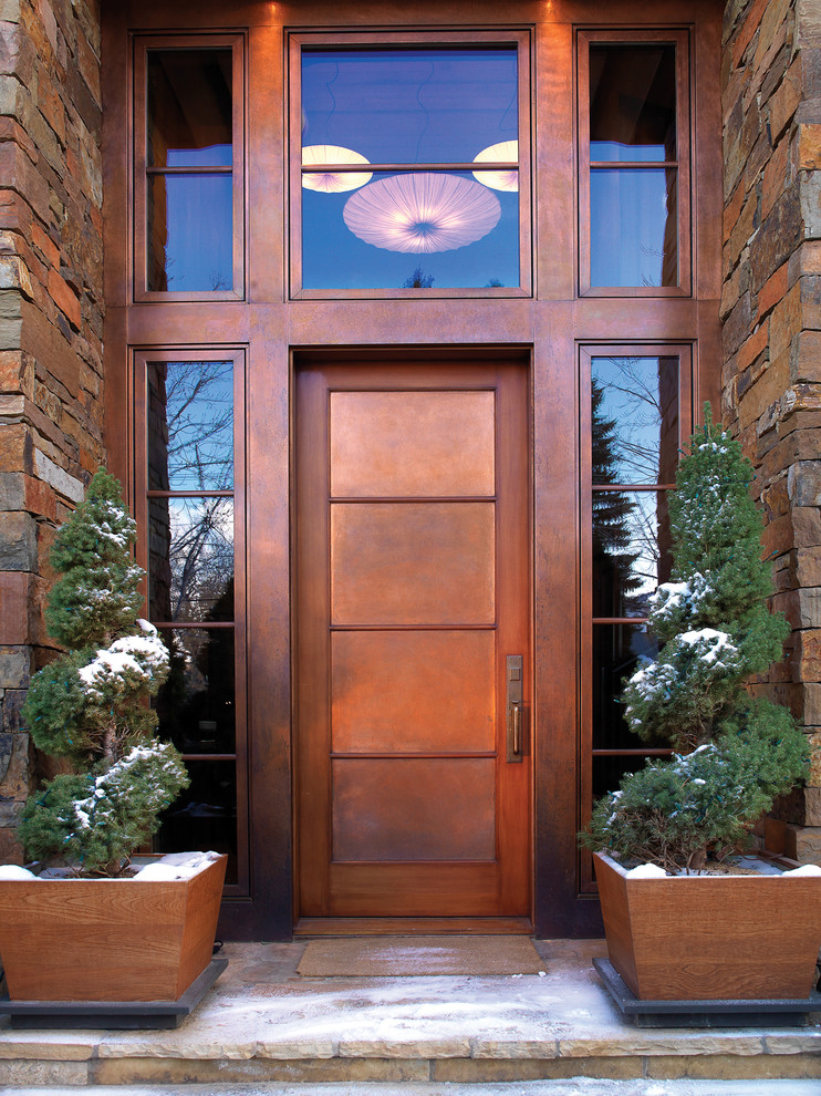Trendy entryway photo in Other with a metal front door