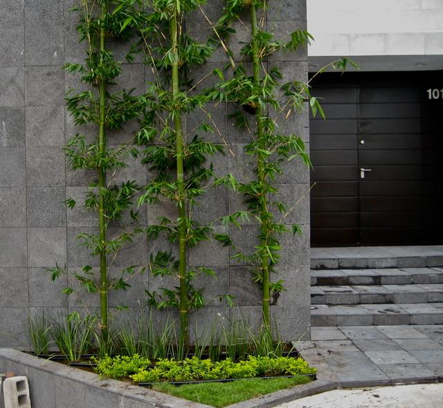 Casa Cantera contemporary-entry