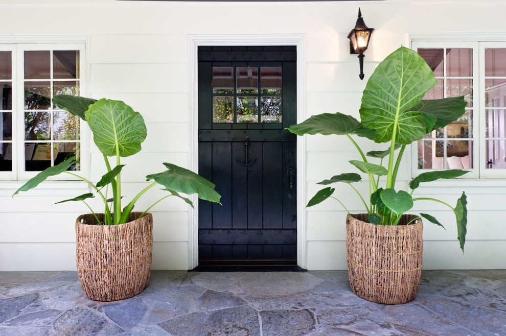 Inspiration for a tropical entryway remodel in Los Angeles with a black front door
