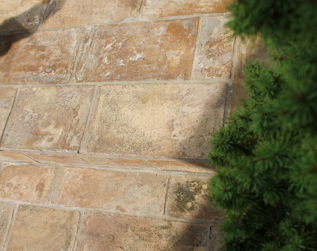 Exterior Steps with reclaimed French Terracotta Parefeuille mediterranean-entry